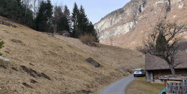Mezza baita di montagna val di Daone RV0153