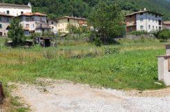Terreno residenziale in zona soleggiata e semi-centrale TR0020